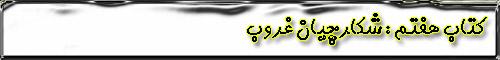 كتاب هفتم : شكارچيان غروب
